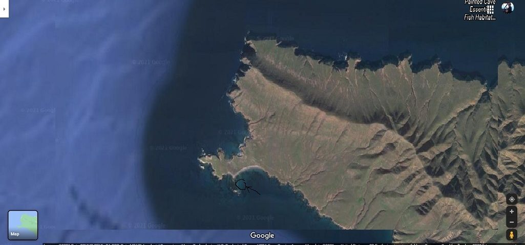 Forney Cove Santa Cruz Isl