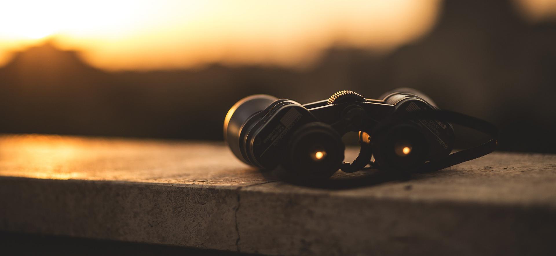 Binocule Binoculars